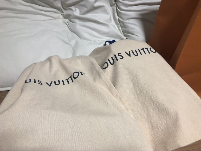 louisvuitton josh backpack